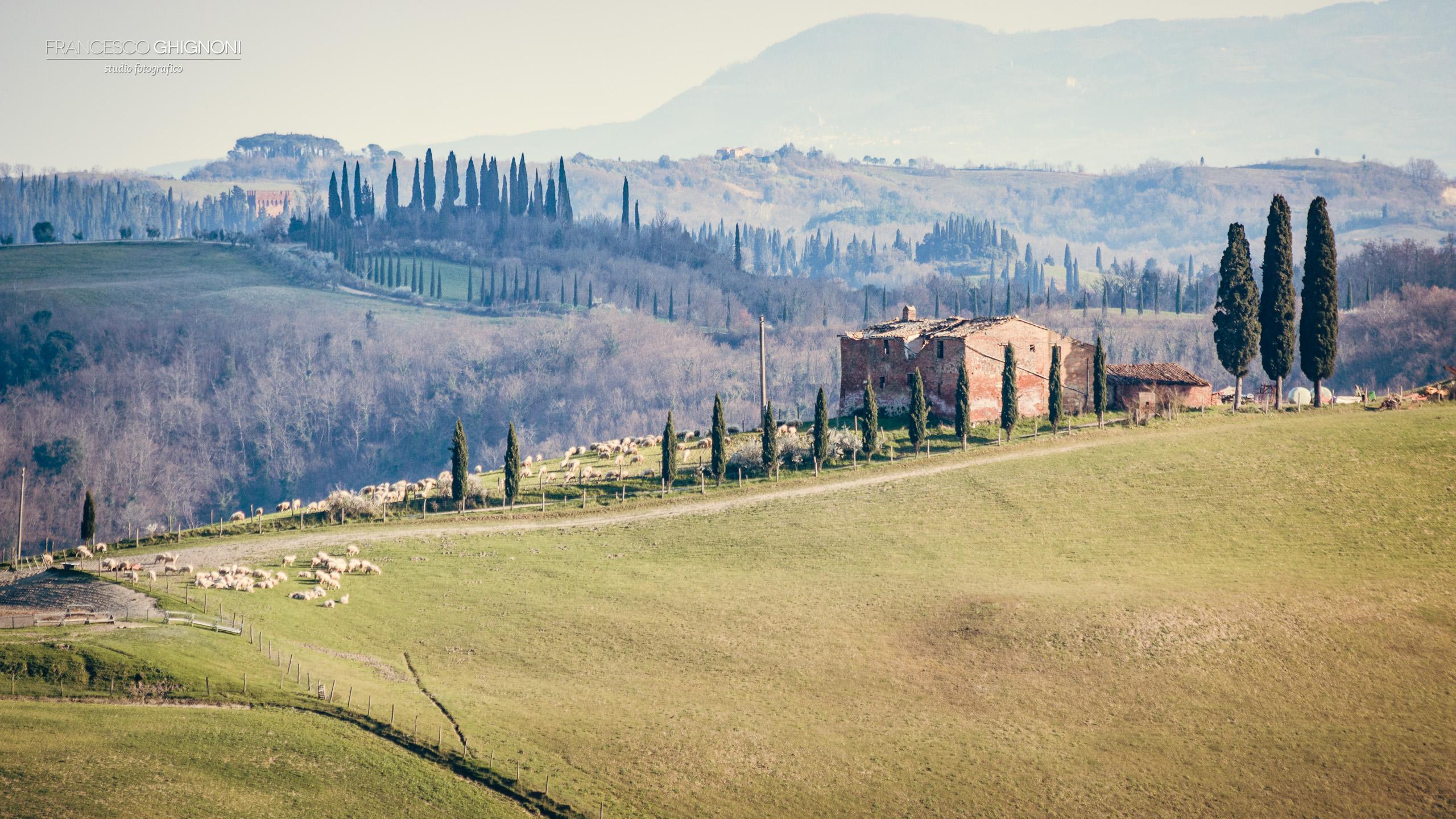 Fotografia Francesco Ghignoni - www.francescoghignoni.it